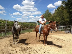 While sometimes do use the best posture I do train horses and here I am training Geronimo 1 of my 4 Wild Mustangs.